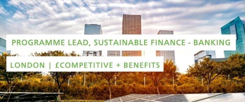 #SustyJob: Programme Lead, Sustainable Finance Group –Banking