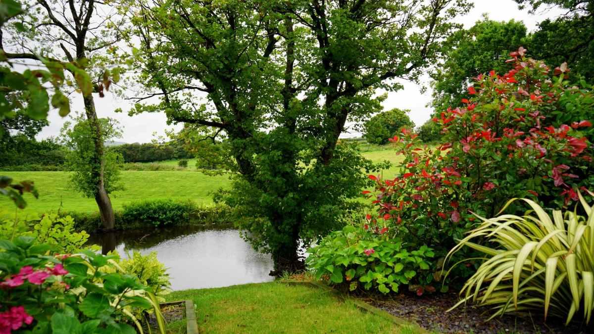 GREEN PLANTS: Incrediblelifesavers